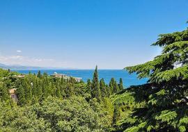 100 метровая зона - Крым, Алушта, Профессорский уголок