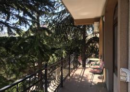 Южная ночь - Алушта гостиница   2-комнатный (семейный)