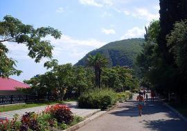 парк санатория Крым в Партените